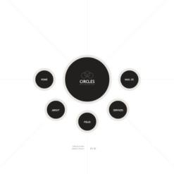 Facebook Flash CMS Template für Designstudio