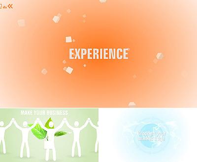 Szablon Intro Flash #41037 na temat: biznes i usługi