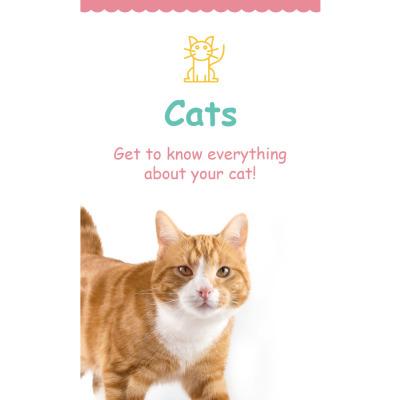 Cat Responsive Nieuwsbrief Template