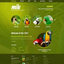 Birds Responsive WordPress Theme