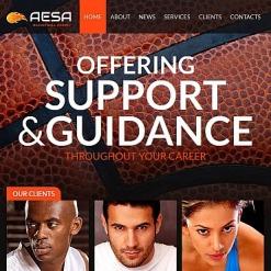 Modèle HTML CMS Pour Facebook  pour site de basketball
