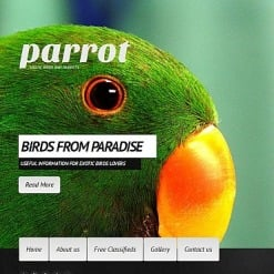 Exotic Pets Facebook HTML CMS Template