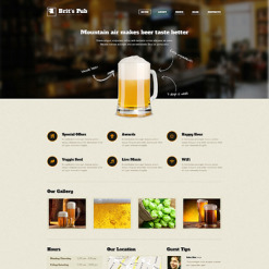 Pub Responsive WordPress Theme