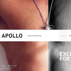 Website Vorlage für Schönheitssalon