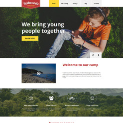 Responsives WordPress Theme für Sommercamp