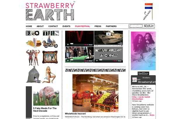 video blog design wordpress - Strawberryearth.com