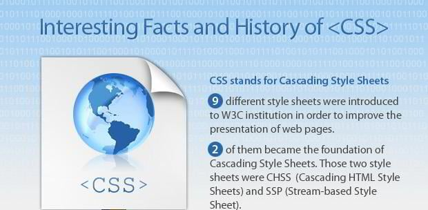 CSS Infographic - Interesting Facts and History - MonsterPost