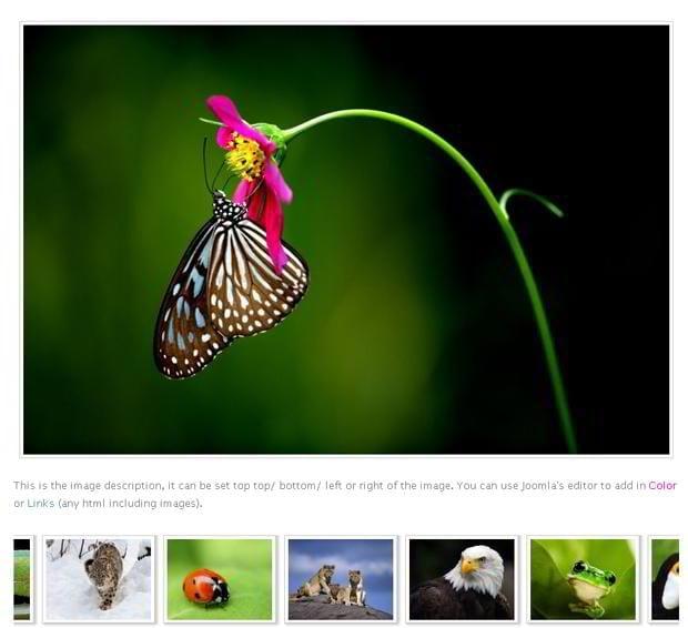 joomla-photo-gallery-extensions