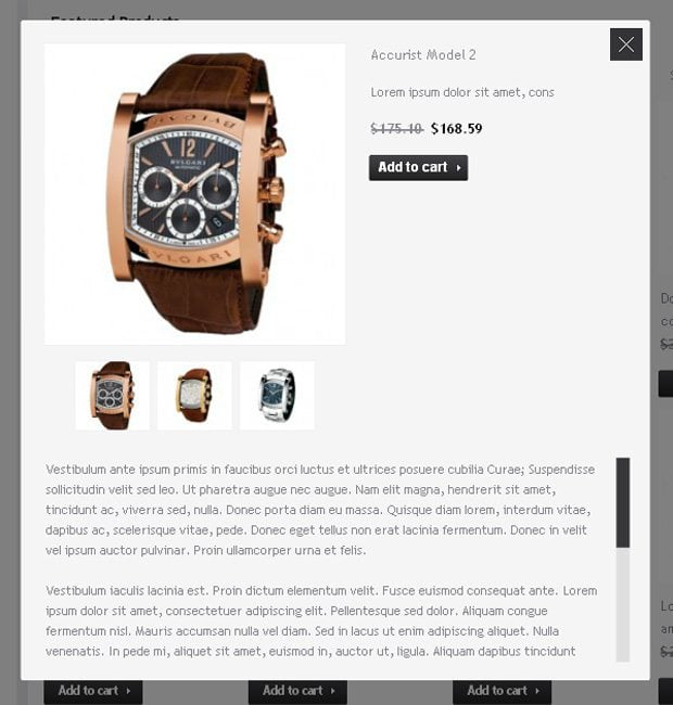 Product Details module of the e-Commerce widget of MotoCMS