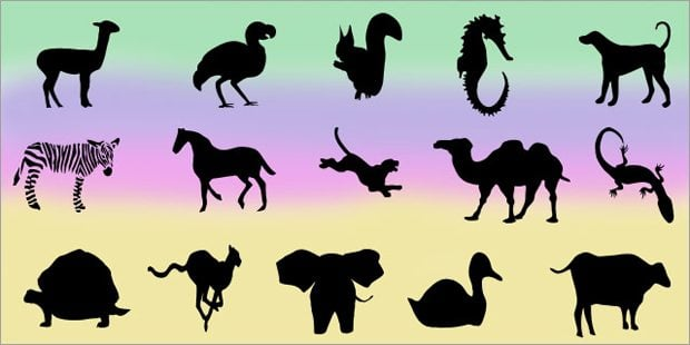 Animal Shapes