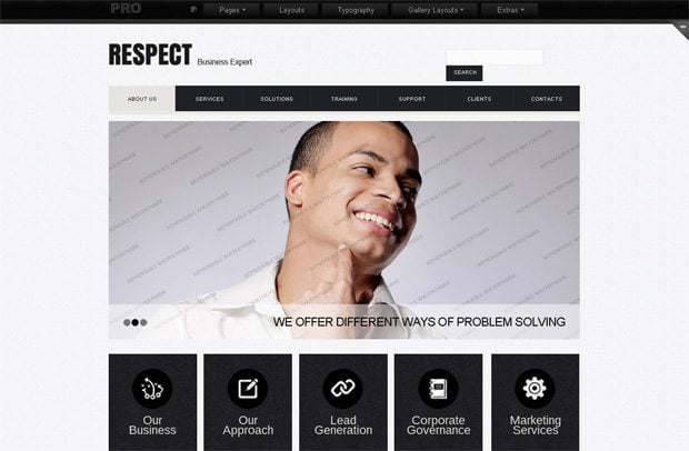 Intrude on the PRO Territory! TemplateMonster Launches PRO Website ...