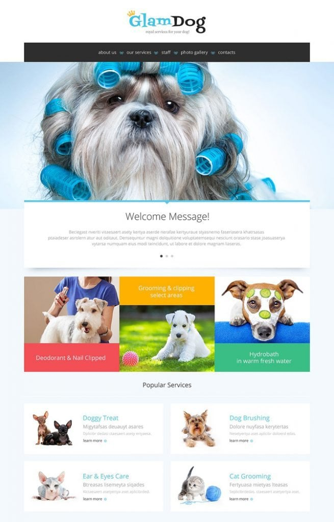 15 best selling html5 templates to get at a 60 discount best selling html5 templates fandeluxe Choice Image