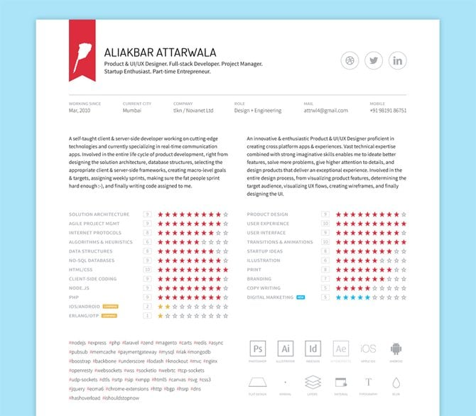 Cool Resume   CV Designs VisualCV