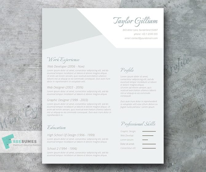this creative resume template will capture attention of any hr manager gray shades can add a formal tone to your cv while calligraphy fonts will present - Interesting Resume Template