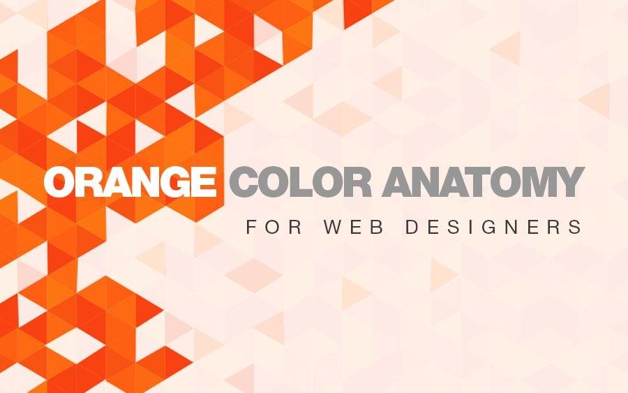 psychology of web design pdf