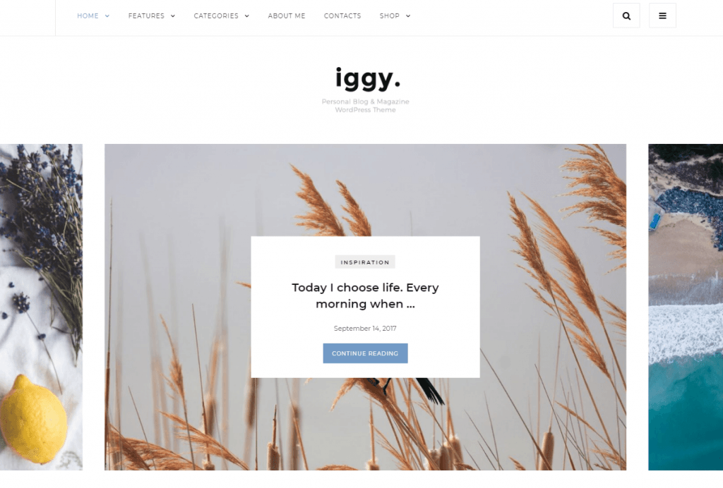 Iggy - Clean Blog & Magazine WordPress Theme
