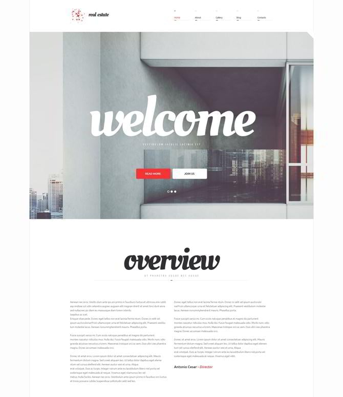 Real-Estate-Agency-WordPress-Theme