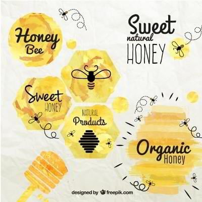 Honey and Bee badges in watercolor style