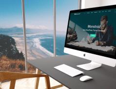 multifunctional WordPress theme