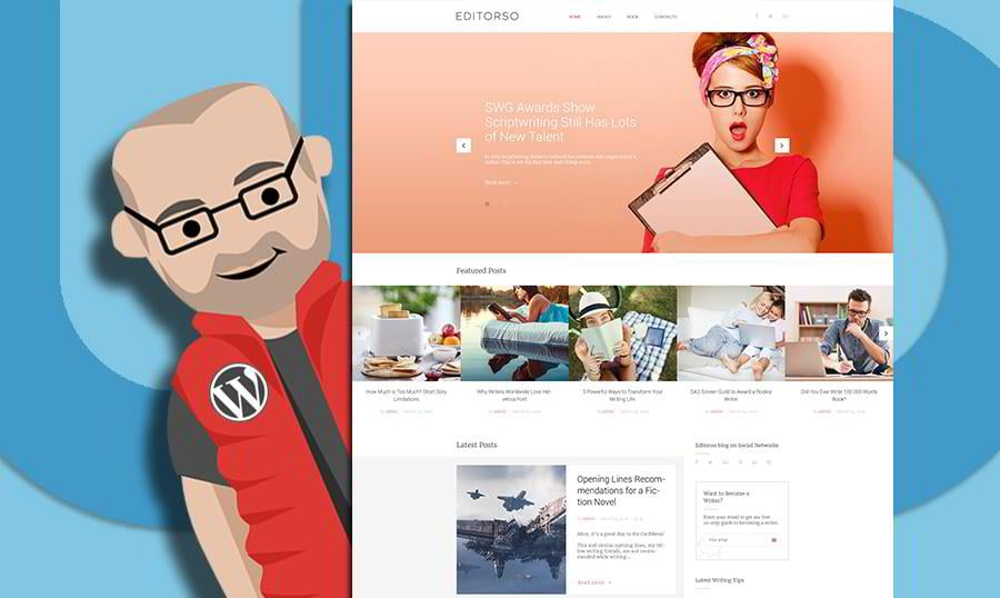 WordPress Themes for Web Developers – Excellent Tools That Will Make Your Work Easier