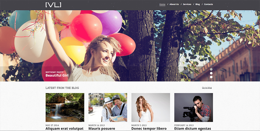 Happy Moments Photo and Video Gallery WordPress Theme