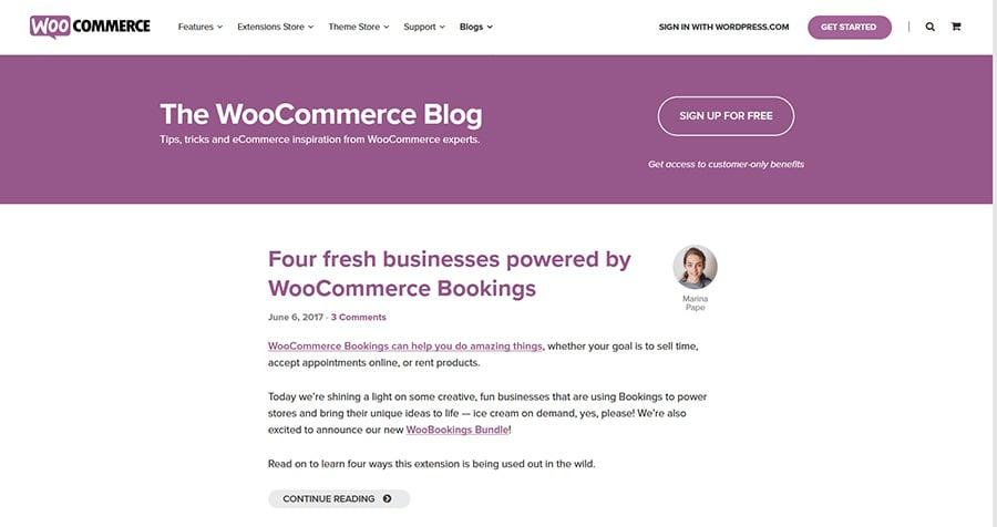 WordPress Blog WooCommerce