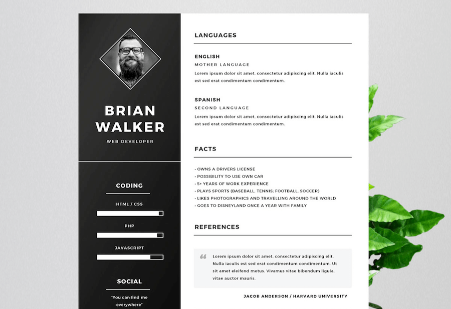 50 best resume templates for word that look like photoshop designs cv template for word yelopaper Choice Image