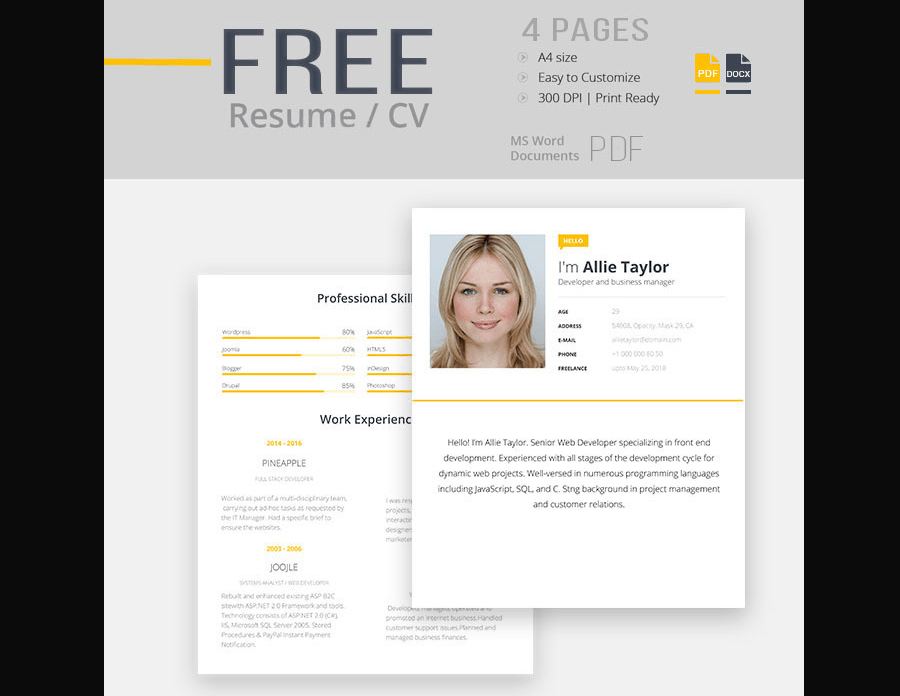 CV Template For Word  Free Resume Templates In Word