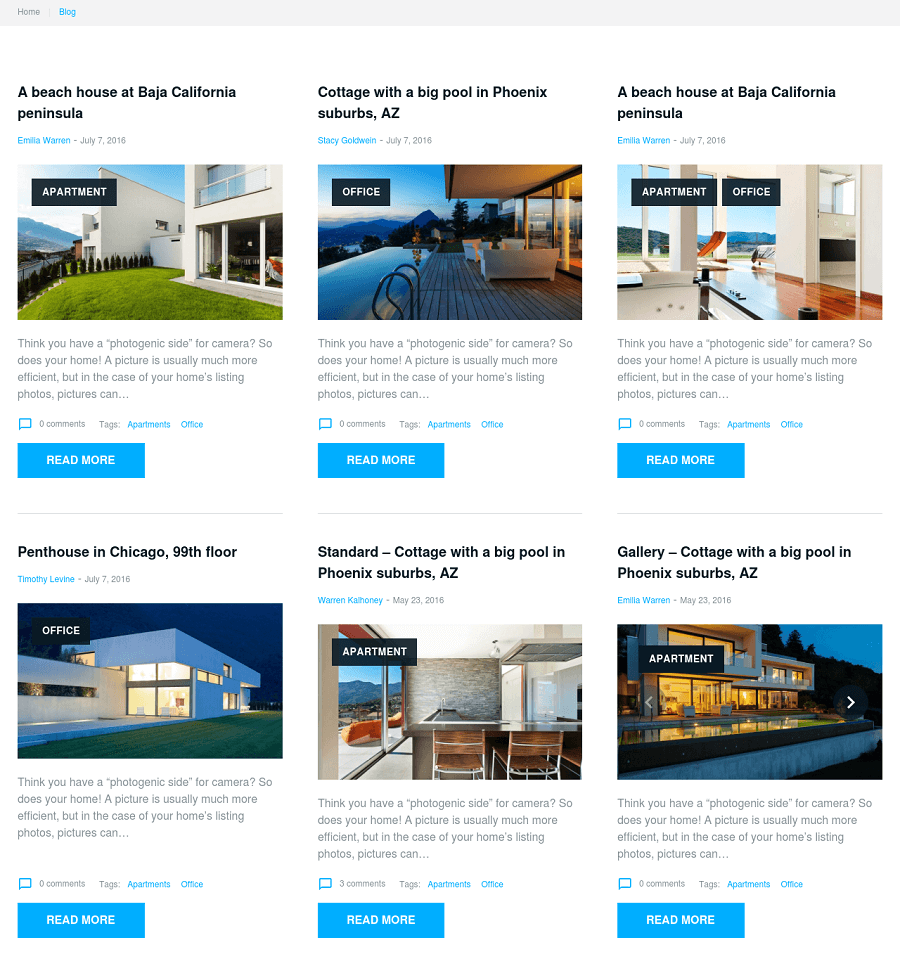 WordPress classifieds theme