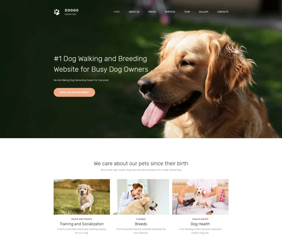 Kennel Club Premium MotoCMS 3 Template