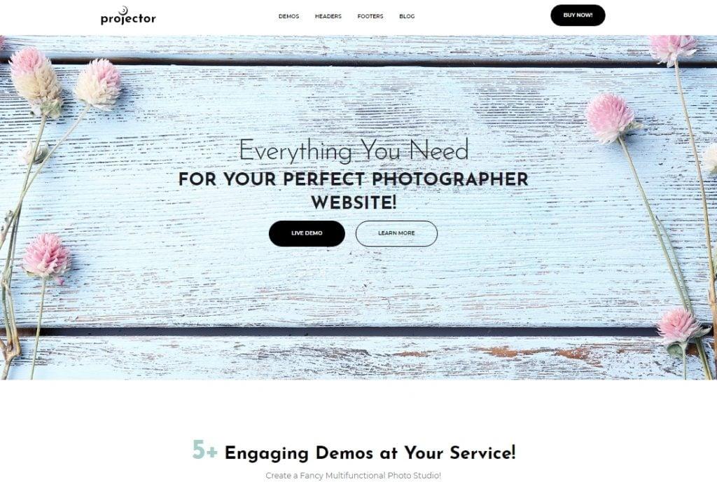 Projector - Photographer Portfolio Multihome WordPress Theme