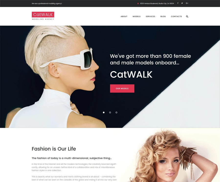 Free Fashion Responsive WordPress Theme