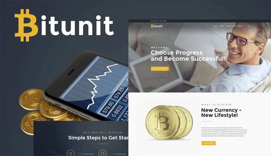 Bitcoin Free WP Theme