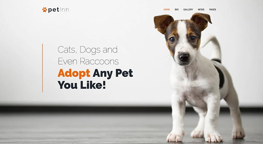 Pets Charity Free WP Theme