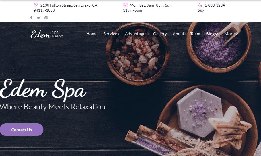 WordPress Salon Themes