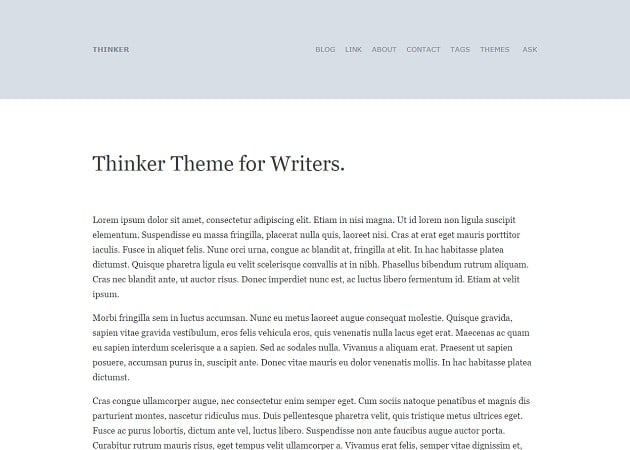Thinker Theme For Writers