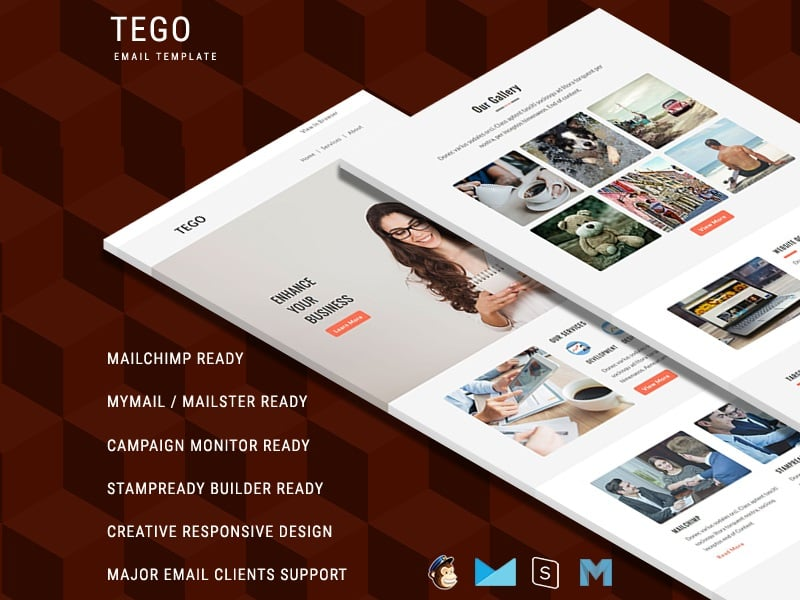 Tego - Responsive Email Template Newsletter Template
