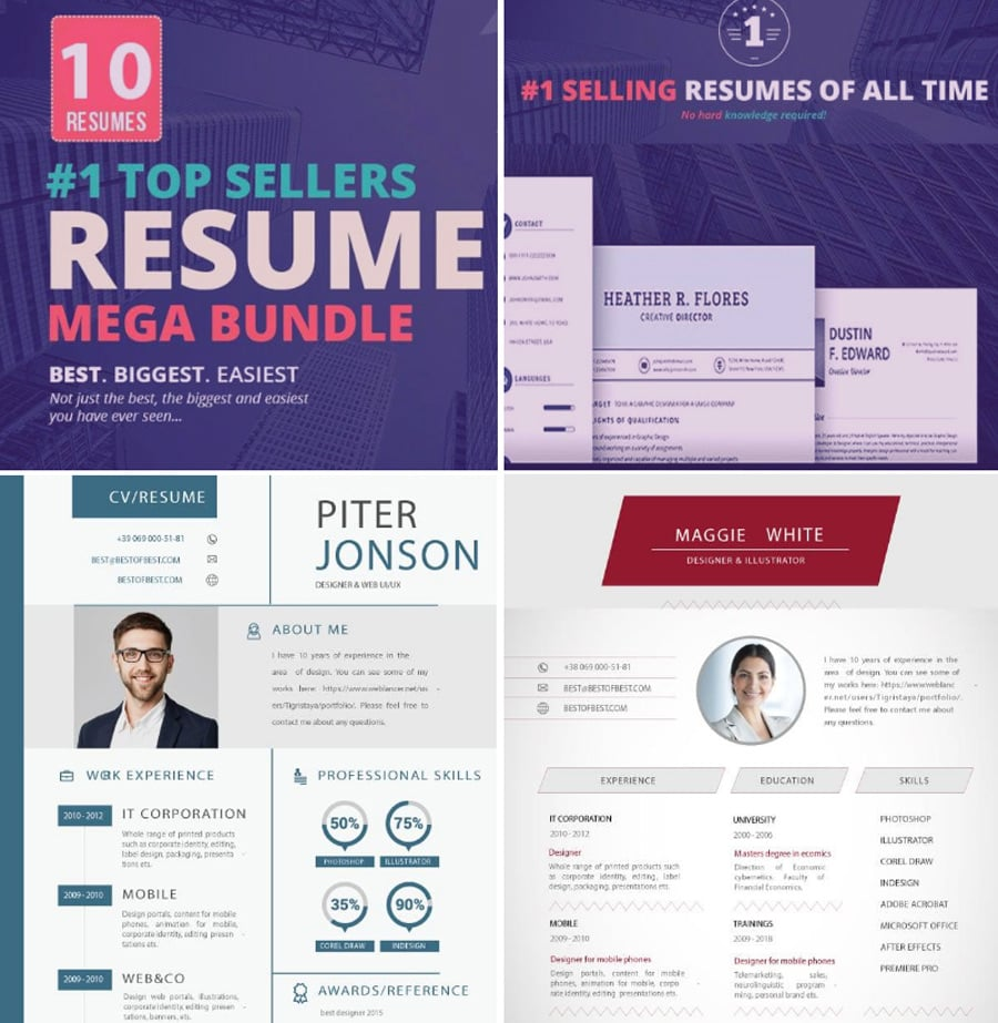 the bundle represents a collection of premium resume templates that can be purchased for 30 only downloading the whole pack you will receive 1 theme for