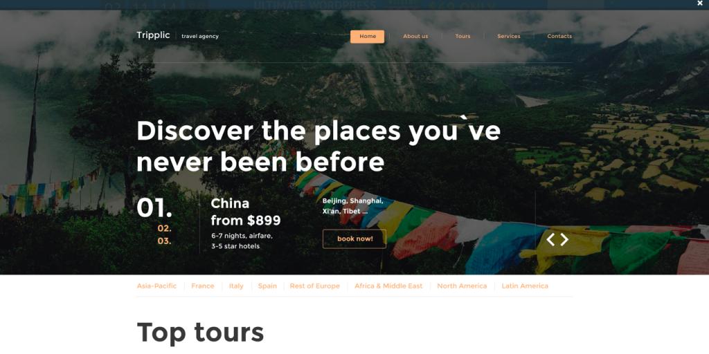Tripplic Website Template