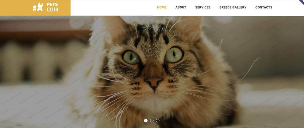 Animals & Pets Responsive Website Template