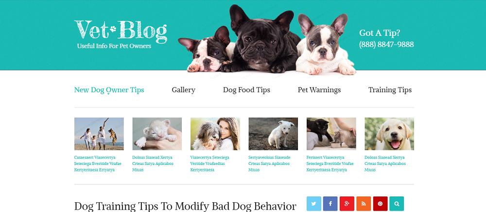 Veterinarian Blog Website Template