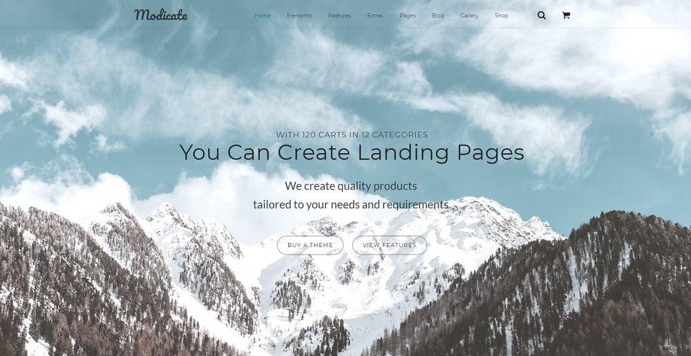 Modicate Multipurpose Website Template