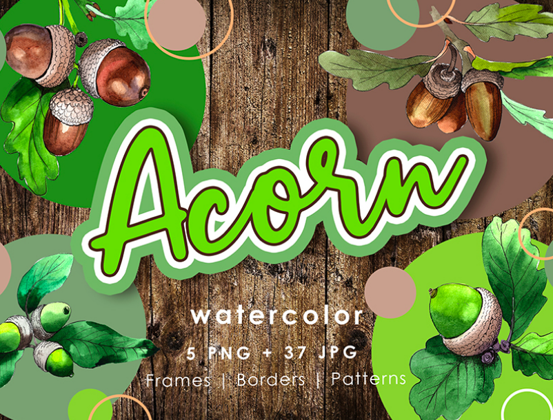 Acorn Plant PNG Watercolor Creative Set Illustration