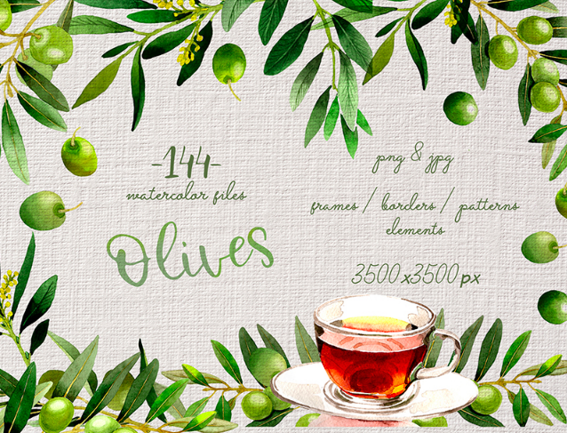 Branches of Olive Tree PNG Watercolor Set Illustration