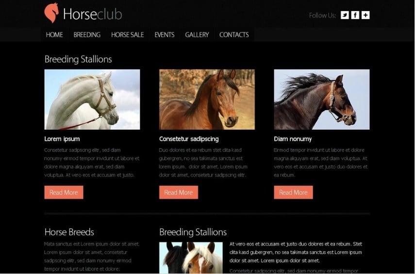 Free Website Template - Horse Club Website Template