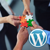 WordPress. How to add Our Team post