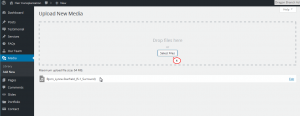 WordPress-How to add additional file types to be uploaded-5