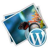 WordPress. How to add an image to widget