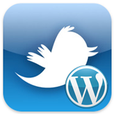 """WordPress Blogging themes. How to work with """"Easy twitter feed"""" widget"""