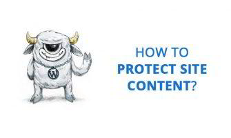 How to Protect Site Content from Copying?